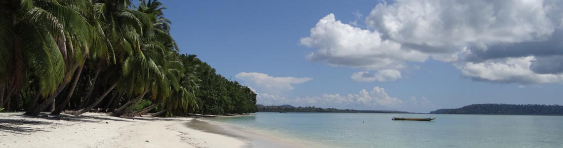 Havelock Island-ANIIDCO