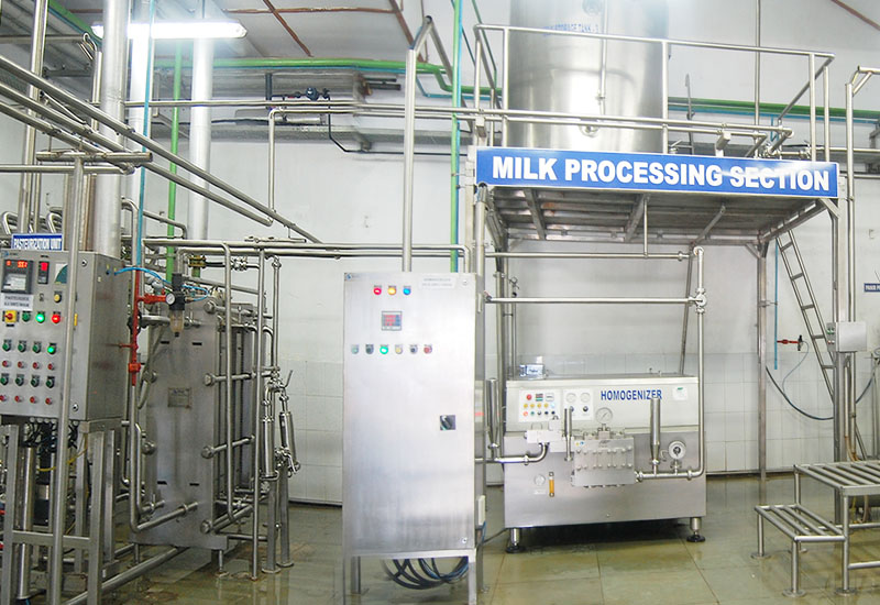 Milk Processing Section